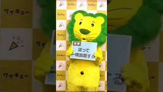 ワイキュー 熊田曜子 2019年7月8日