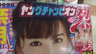 ヤングチャンピオン烈 No.2 2019年 2/25 号 奈月セナ【秋田書店】