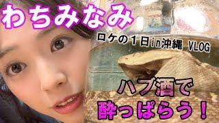 【わちみなみ】ロケの1日in沖縄 VLOG ハブ酒で酔っぱらう!
