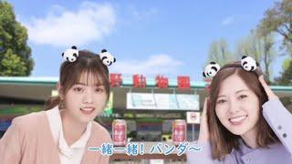 【西野七瀬】&白石麻衣のSUPER DRYバてチヤルあ花見