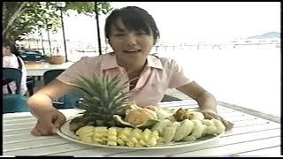 Fカップグラビアアイドル磯山さやかさんの若い頃の動画