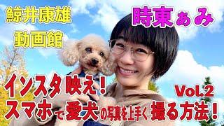 時東ぁみ インスタ映え!スマホで愛犬の写真を上手く撮る方法!Vol.2 鯨井康雄写真館