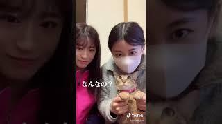 上西恵 NMB48 上西怜