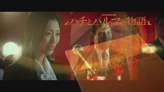 いよいよ5.28公開!映画「ハチとパルマの物語」 壇蜜が語る映画の見どころ