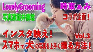 時東ぁみ インスタ映え!スマホで犬の写真を上手く撮る方法!Vol.3 鯨井康雄写真館
